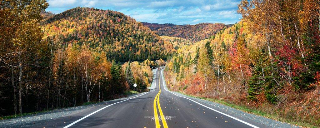Route en Gaspésie
